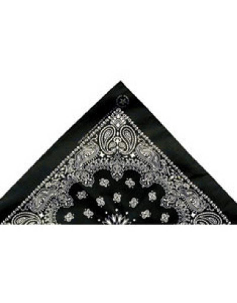 Bandanas Paisley Design