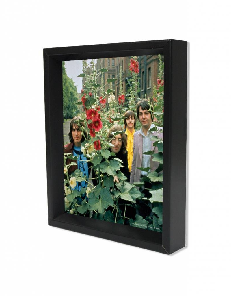 "3D Shadowbox 8""x10"" - The Beatles Flowers"