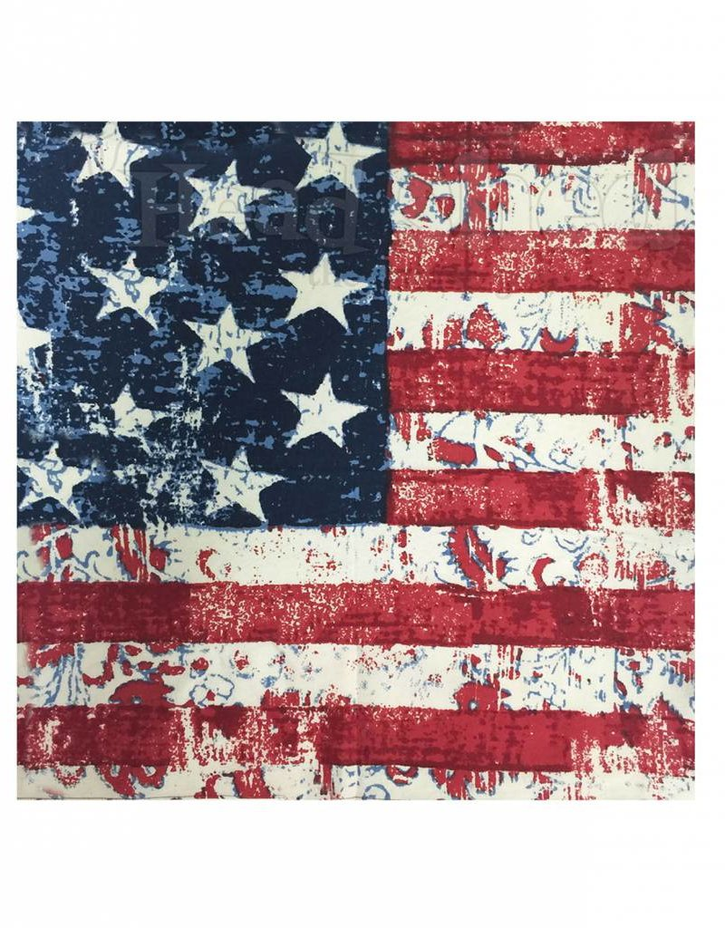 Bandana Vintage American Flag