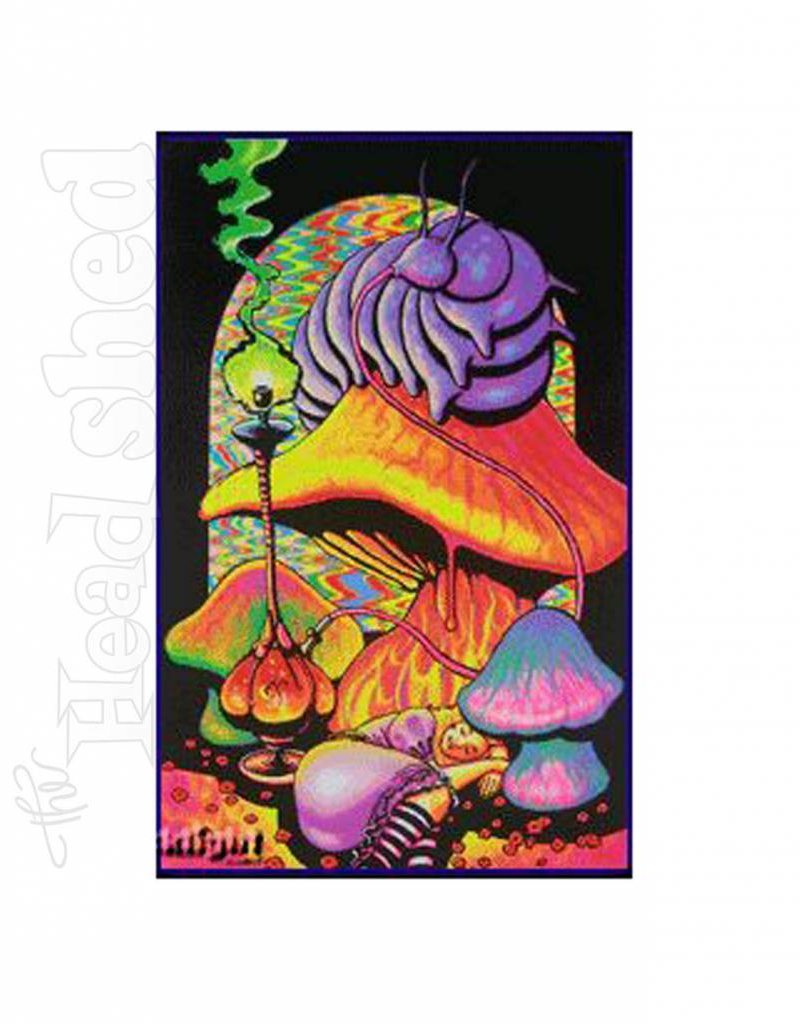 Black Light Poster - Alice