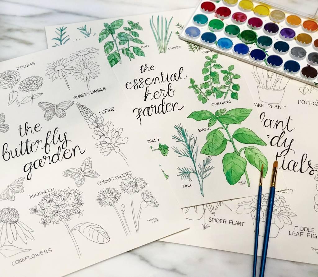 Oct 13: Watercolors 101