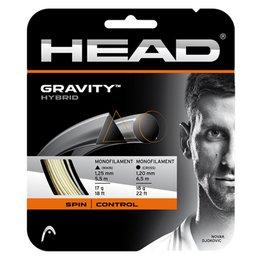 Head Gravity