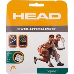 Head Evolution Pro 17