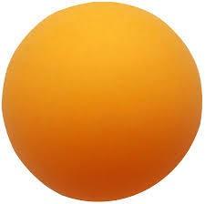 Donic-Schildkröt 38mm No Logo Balle Tennis de Table
