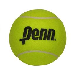 Penn Large 4'' Tennis Ball