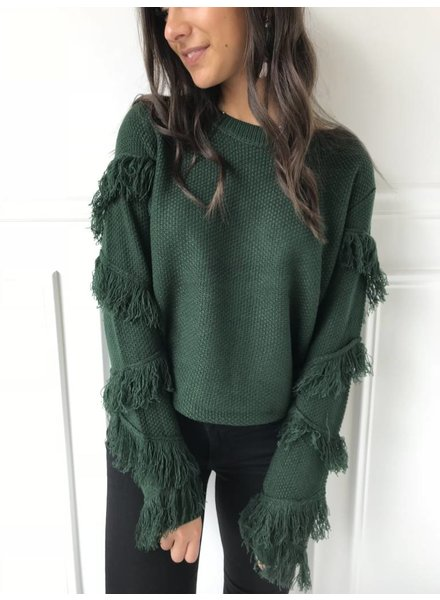 lumiere AT02679 sweater top with fringe on sleeves