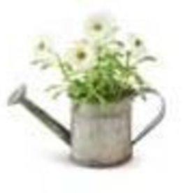 K & K Interiors, Inc. Metal Water Can w/ Daisies