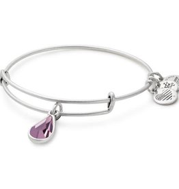 Alex and Ani Swarovski Teardrop Color Code EWB June, Light Amethyst Silver