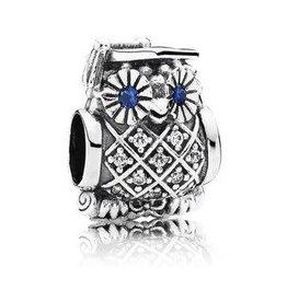 Pandora Jewelry Charm Graduate Owl