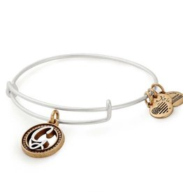 Alex and Ani Initial G II EWB, Two Tone, RS
