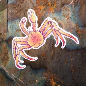 Crab- Decal