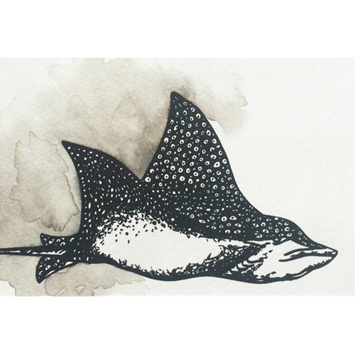 Spotted Eagle Ray- 5 x 7 Octopus Ink Watercolor