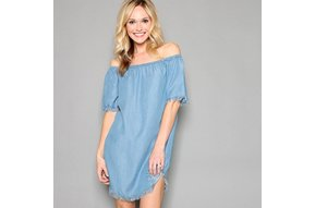 INTO THE FRAY CHAMBRAY DRESS