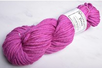 Wonderland Yarns TweedleDeeDum 26 Snap Dragon Fly