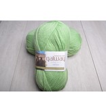 Plymouth Galway Worsted 176 Endive Green