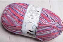 Opal 4 ply Sock Yarn 8864 Horse Whisperer