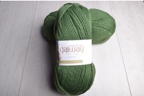 Image of Plymouth Galway Worsted 195 Aloe