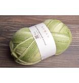 Image of Rowan Pure Wool Worsted 178 Green Wash