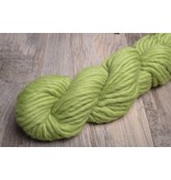 Blue Sky Fibers Bulky 1212 Grasshopper