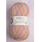 Image of WYS Signature 4 Ply 847 Sherbet Fizz