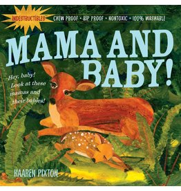 WORKMAN PUBLISHING MAMA & BABY INDESTRUCTIBLE