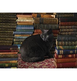 COBBLE HILL LIBRARY CAT 1000 PC PUZZLE