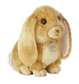 AURORA LOP EARED RABBIT