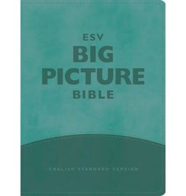 BIG PICTURE BIBLE ESV - TEAL