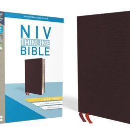 NIV Giant Print Thinline Bible - Burgundy Indexed