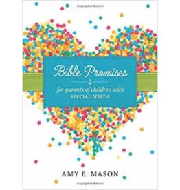 AMY MASON BIBLE PROMISES FOR KIDS WITH SPECIAL NEEDS