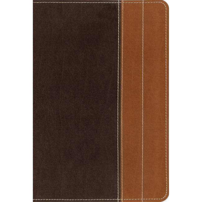 NIV Essentials Study Bible - Chocolate/Tan