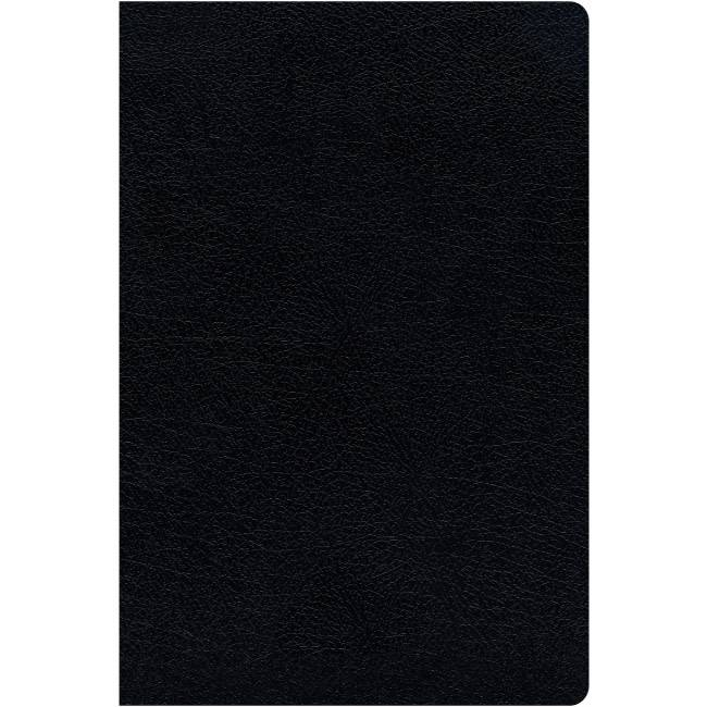 NIV Thinline Reference Bible - Black Indexed
