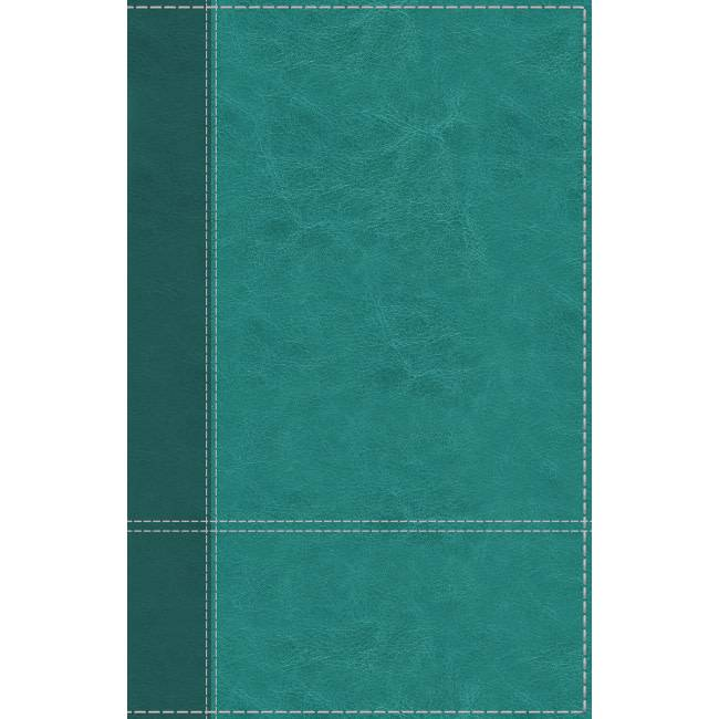 NIV Personal Size Large Print Reference Bible - Turquoise