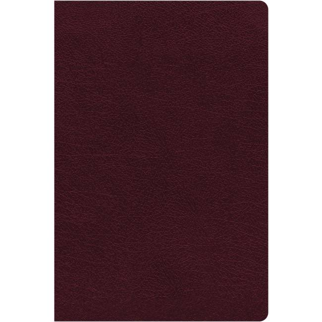 NIV Giant Print Reference Bible - Burgundy Indexed