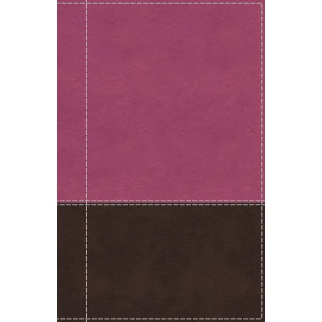 NIV Giant Print Reference Bible - Pink/Brown Indexed