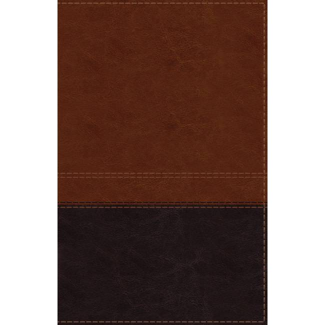 NIV Giant Print Reference Bible - Brown Indexed