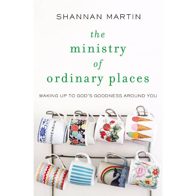 SHANNAN MARTIN The Ministry Of Ordinary Places
