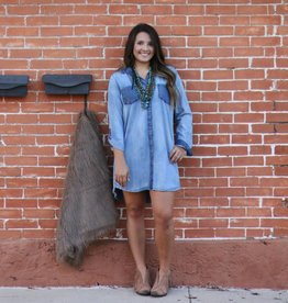 Frayed Tencil Denim Buttondown Dress