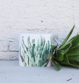 Oval Cacti Vase - Planter
