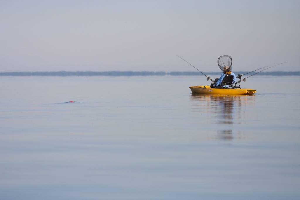 Hobie Cat Company Hobie Mirage 180 Pro Angler 14 Kayak