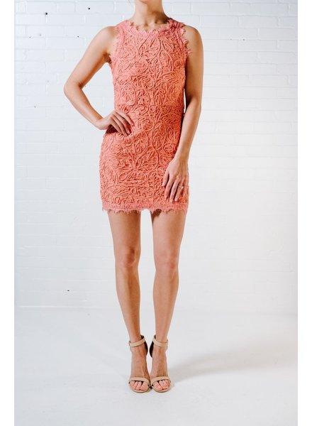 Mini Rose lace mini dress