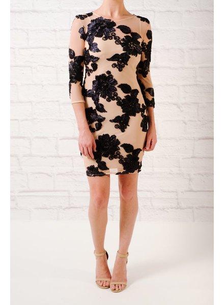Dressy Sheer applique dress