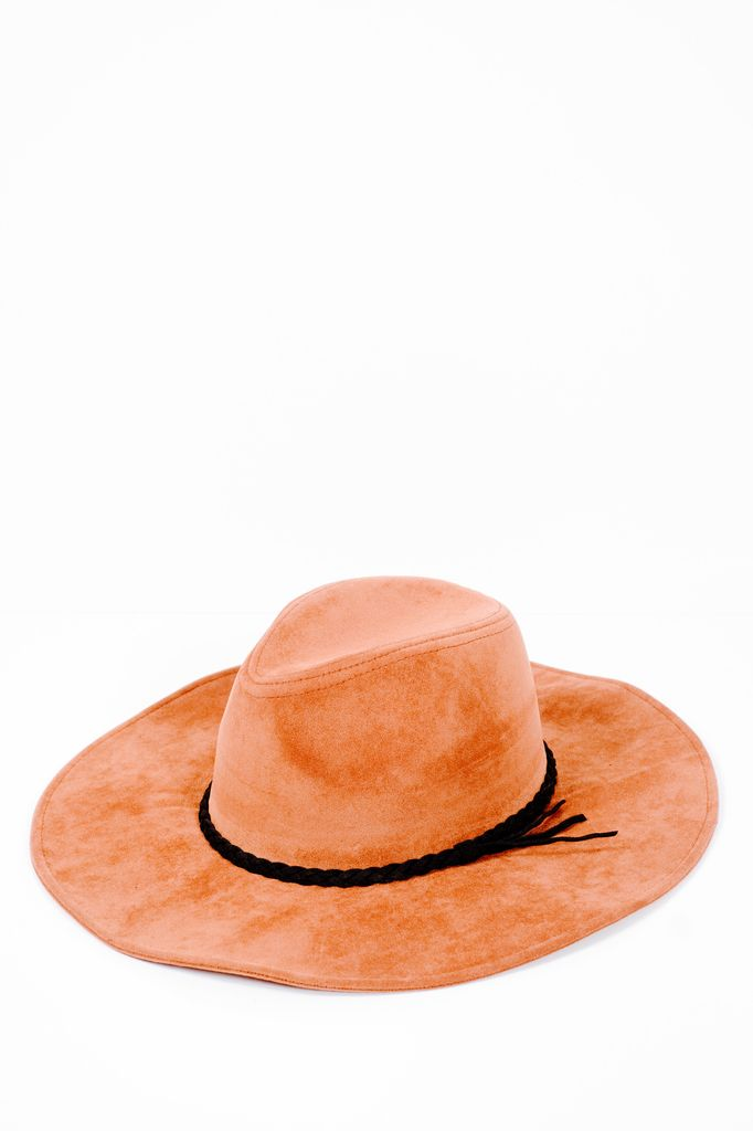 Hat Suede trilby hat