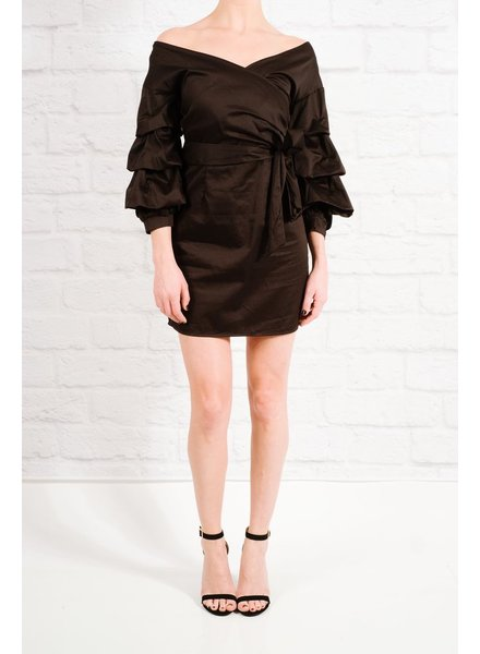 Dressy Rouched sleeve dress