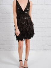 Dressy Sequin feathered LBD