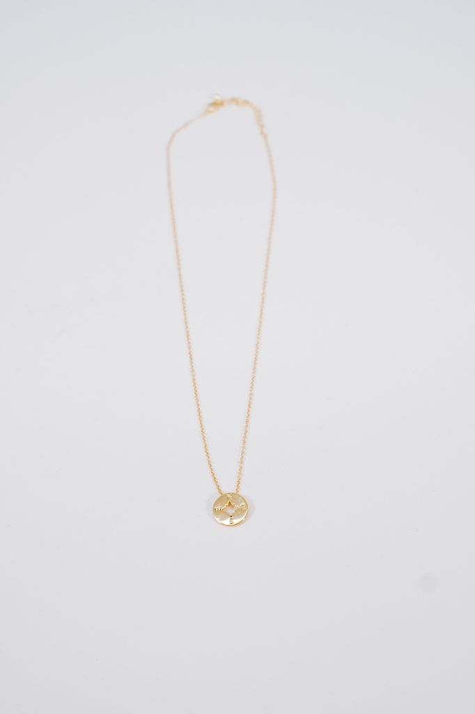 Gold Gold tone compass necklace