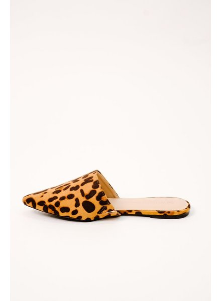 Flat Leopard slides