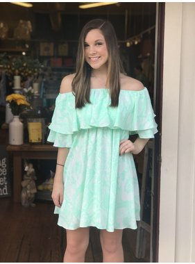 Buddy Love Wholesale Maddox Mint Snake Print Dress