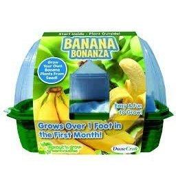 Dunecraft Dunecraft Banana Bonanza