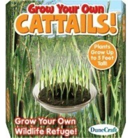 Dunecraft Dunecraft Grow Your Own Cattails